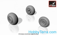 Wheels set 1/72 An-28 cash wheels w/weighted tires